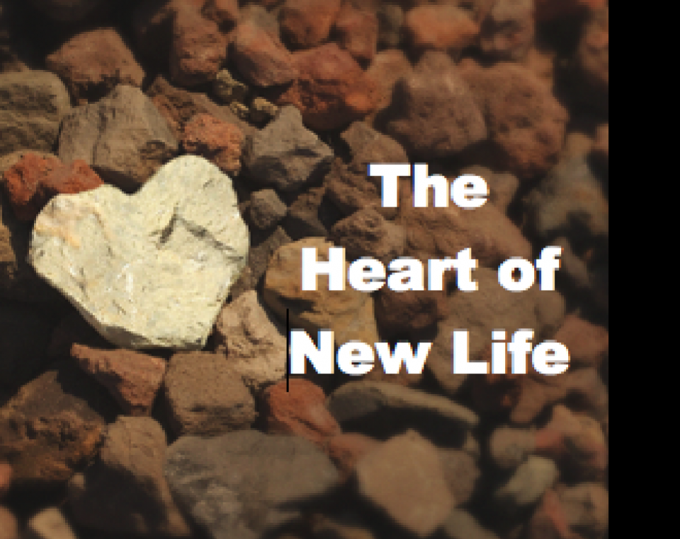 The Heart of New Life